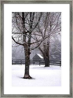 Coming Home Framed Print by Linda Drown