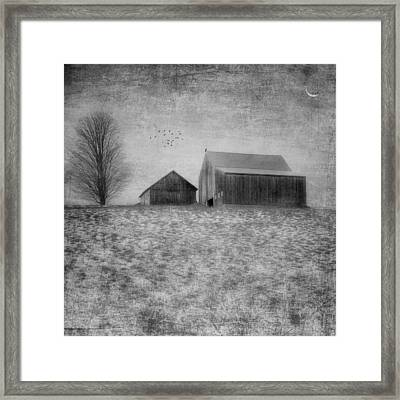 Coming Home To Roost Bw Framed Print by Bill Wakeley