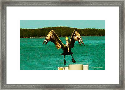 Coming In For A Landing Framed Print by Susan Vineyard