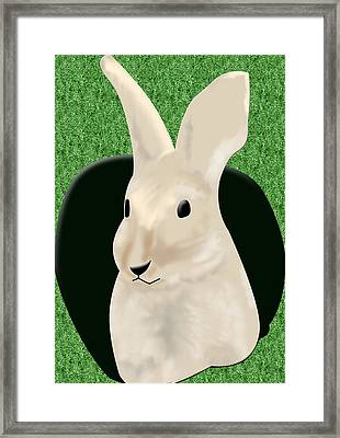 Coming Out The Rabbit Hole Framed Print by Melissa Stinson-Borg