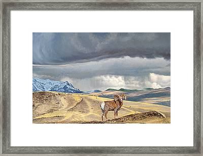 Coming Rainstorm Framed Print