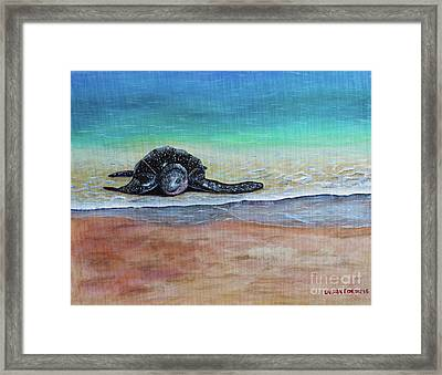 Coming To Nest Framed Print