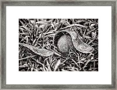 Coming Undone Framed Print by CJ Schmit
