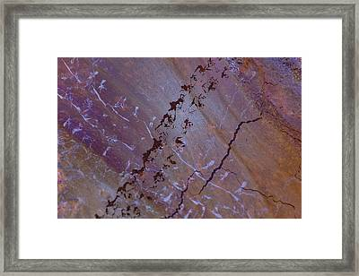 Comings And Goings Framed Print by Deborah Hughes