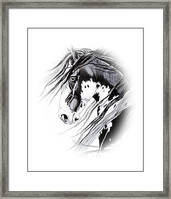 Commanche Framed Print