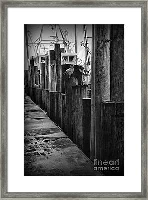 Commercial Fishing Docks Of Nj Framed Print