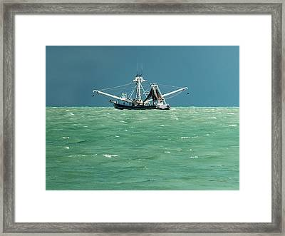 Commercial Fishing In Key West Framed Print