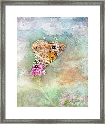 Framed Print featuring the photograph Common Buckeye by Betty LaRue