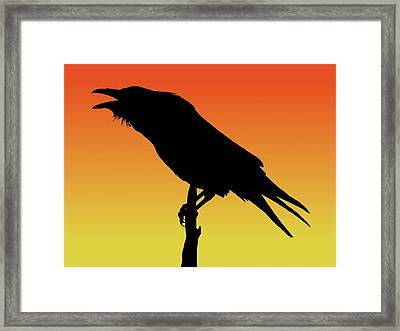 Common Raven Silhouette At Sunset Framed Print