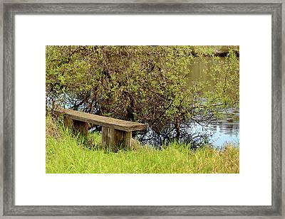 Framed Print featuring the photograph Communing With Nature by Art Block Collections