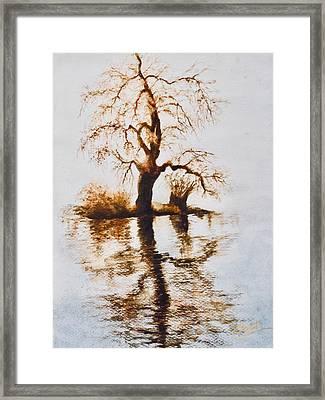 Como Lake Reflections Framed Print