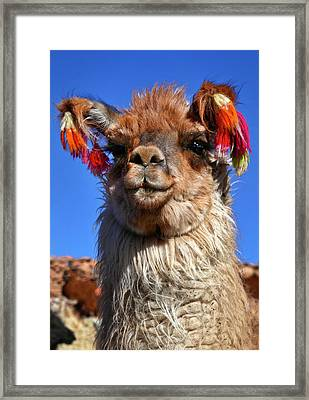 Framed Print featuring the photograph Como Se Llama by Skip Hunt