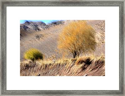 Compainion Framed Print by Robert Shahbazi