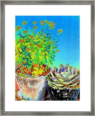 Companionship	 Framed Print by Ann Johndro-Collins