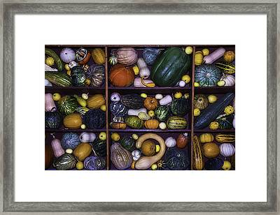 Compartments Of Gourds Framed Print by Garry Gay