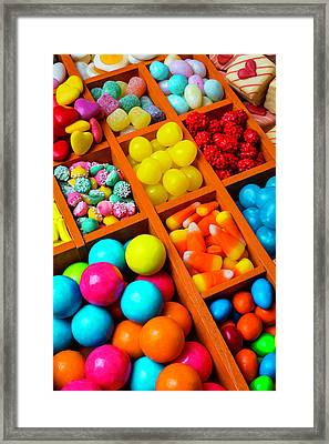 Compartments Of Yummy Candy Framed Print by Garry Gay