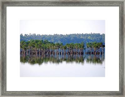 Compass Lake Framed Print