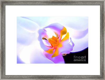 Compassion Framed Print by Krissy Katsimbras