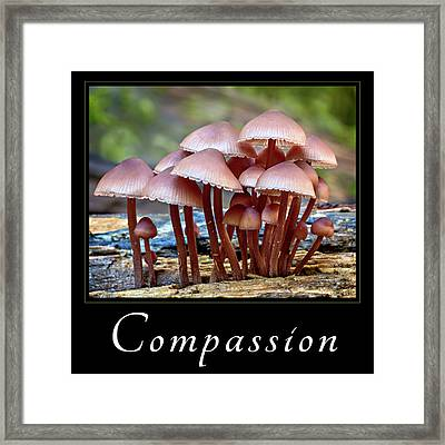 Framed Print featuring the photograph Compassion by Mary Jo Allen