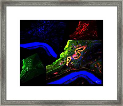 Complementary Cells And Colors-2 Framed Print by Zafer Gurel