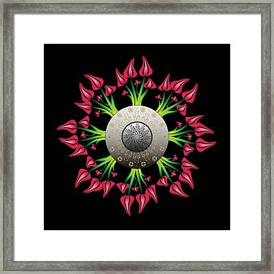 Complexical No 2075 Framed Print