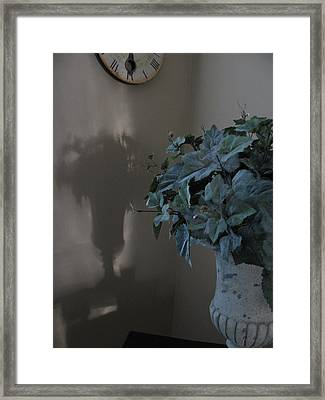Framed Print featuring the photograph Compliments Of The Sun by Lindie Racz