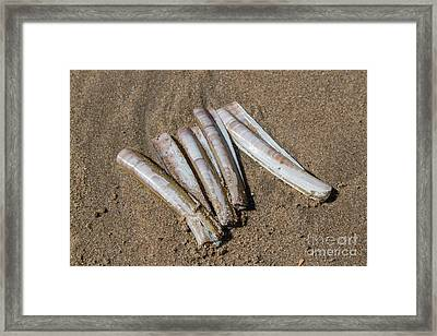 Composition #1 Framed Print