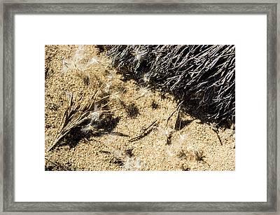 Composition II Framed Print