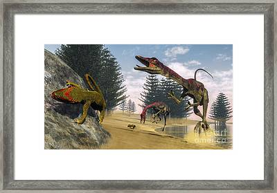 Compsognathus Dinosaur Hunting A Gecko Framed Print by Elena Duvernay
