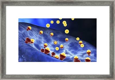 Conceptual Image Of Synapse Receptors Framed Print by Stocktrek Images