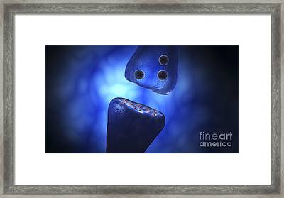 Conceptual Image Of Synaptic Vesicles Framed Print by Stocktrek Images