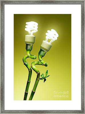 Conceptual Lamps Framed Print by Carlos Caetano