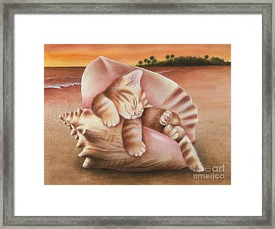 Conch Kitten Framed Print
