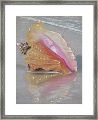 Conch On Beach Framed Print by Joan Swanson