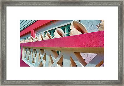 Conch Shells On A Pink Wall - Ambergris Caye, Belize Framed Print