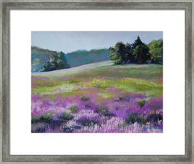 Concord Loosestrife Framed Print by Jeanne Rosier Smith