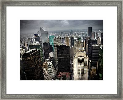 Concrete Jungle Framed Print by Martin Newman