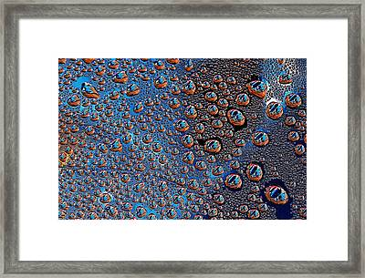 Condensation Collection Framed Print