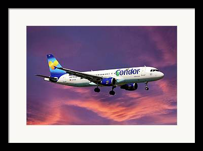 Condor Framed Prints