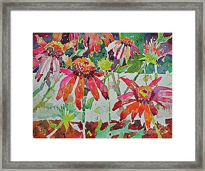 Cone Flowers And  Three Bands Framed Print