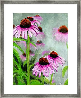 Coneflowers In The Mist Framed Print