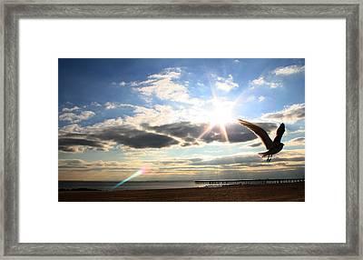 Coney Island Flare Framed Print by Jason Hochman