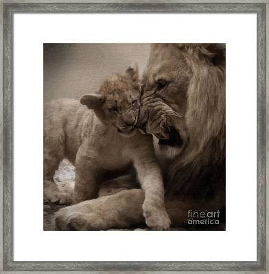 Confidence 2 Framed Print