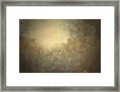 Connected  Framed Print by Mark Ross