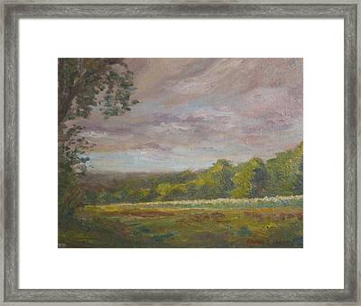 Connecticut Cornfield Framed Print