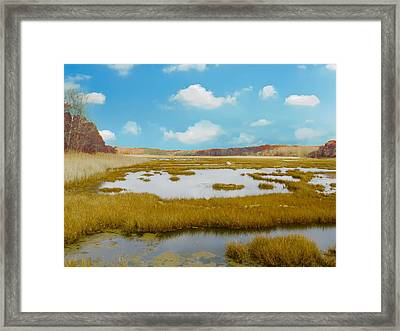 Connecticut Salt Water Marsh Framed Print