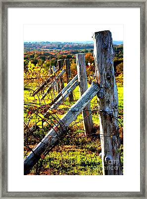 Connecticut Winery In Autumn Framed Print