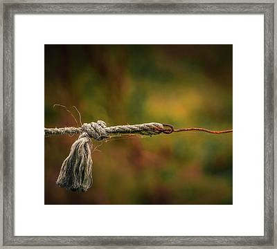 Connection Framed Print by Odd Jeppesen