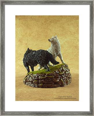 Connection Of Opposities Framed Print