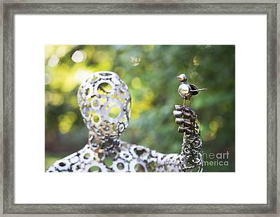 Connection Framed Print by Tim Gainey